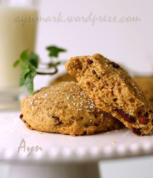 brakfastcookies